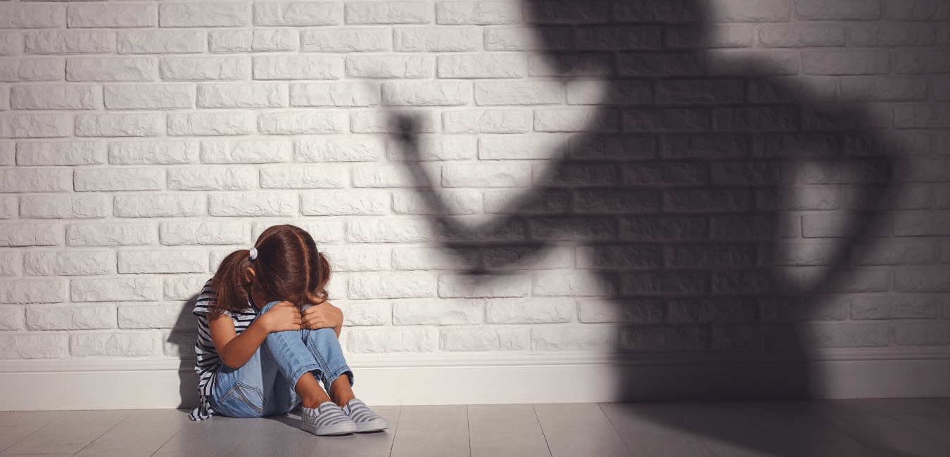 Collateral Consequences of Domestic Violence Convictions